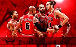Chicago Bulls 2011 NBA Conference Finals