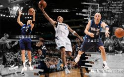 Jason Kidd Mavs Widescreen
