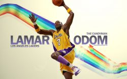 Lamar Odom Lakers Dunk Widescreen