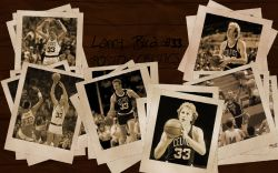 Larry Bird Celtics Widescreen