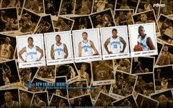 New Orleans Hornets Polaroid 2010 Widescreen
