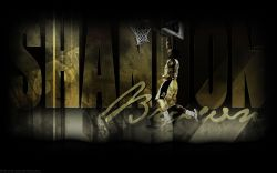 Shannon Brown Slam Dunk Widescreen wallpaper