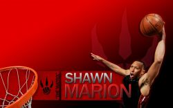 Shawn Marion Raptors Widescreen