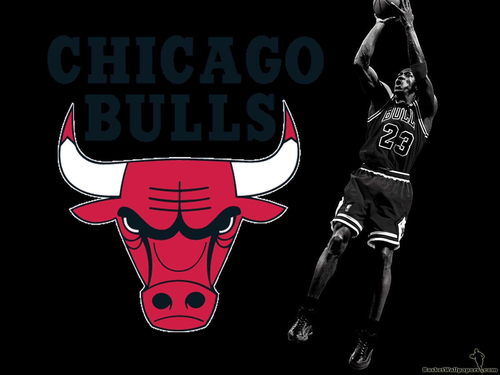 Michael Jordan Chicago Bulls Logo