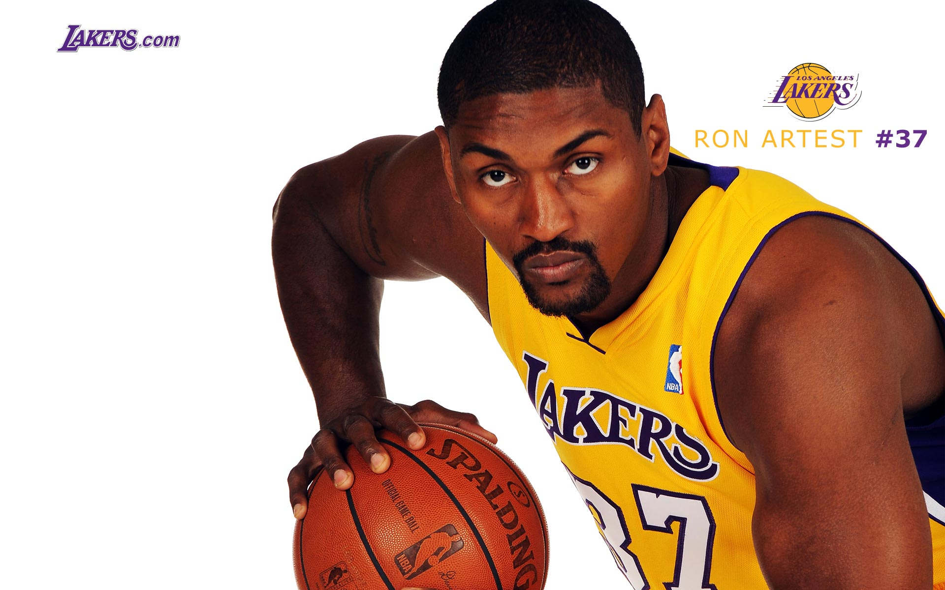 Ron Artest LA Lakers Widescreen